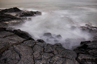 Photograph - At Water's Edge by Windy Corduroy