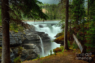 Photograph - Athabasca Falls Through The Forest by Adam Jewell