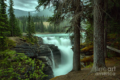 Athabasca Falls Photograph - Athabasca Falls Through The Trees by Adam Jewell