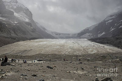Photograph - Athabasca Glacier by Patricia Hofmeester