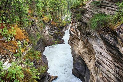 Photograph - Athabasca River Gorge by Teresa Zieba