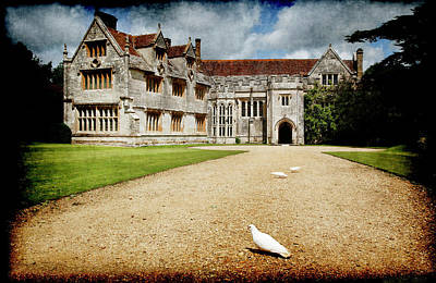 Photograph - Athelhamptom Manor House by Jennifer Wright