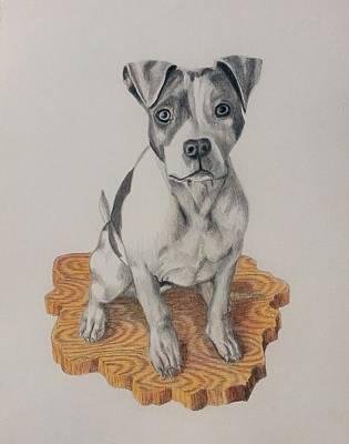 Pitbull Drawing - Athena by JoAnn Morgan Smith