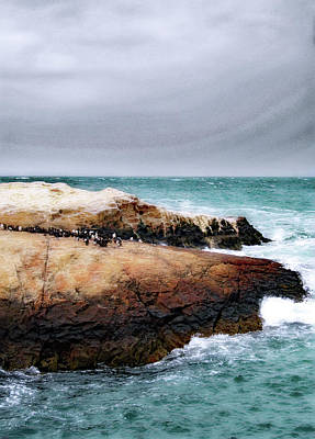 Photograph - Atlantic No. 47-2 by Sandy Taylor