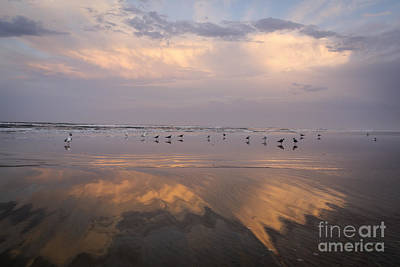 Photograph - Atlantic Reflections by Dennis Hedberg