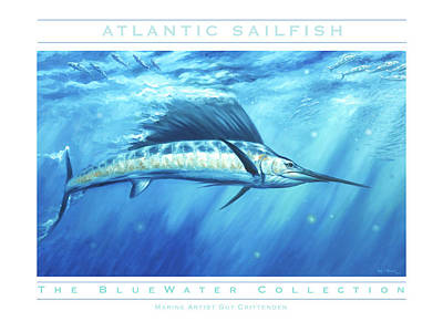 Wall Art - Painting - Atlantic Sailfish by Guy Crittenden