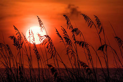 Photograph - Atlantic Sunrise #1 by Van Sutherland
