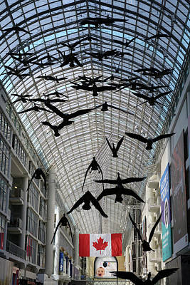 Toronto Photograph - Atrium Skylight With Canada Geese And Flag At The Eaton Centre T by Reimar Gaertner