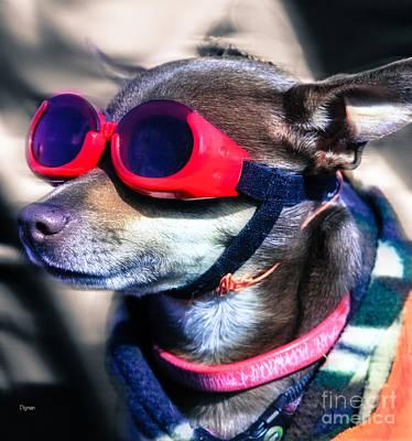 Cute Dog Digital Art - Attitude  by Steven  Digman