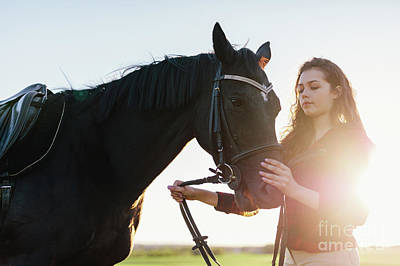 Photograph - Attractive Young Woman Holding A Dark Horse On A Harness. by Michal Bednarek