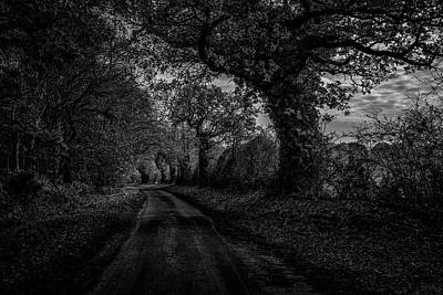 Greenman Photograph - Mysterious Autumnal Lane Covehythe Suffolk by Lee Thornberry
