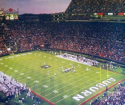 Auburn Football Art Print