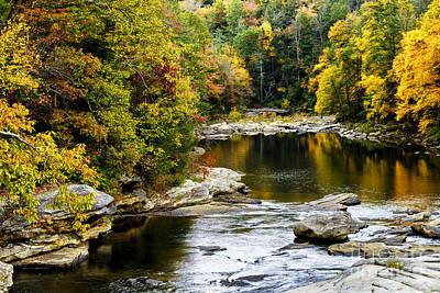 West Fork Photograph - Audra's Autumn Splendor by Thomas R Fletcher