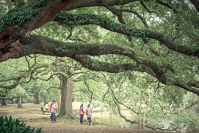 Photograph - Audubon Park by Scott Rackers