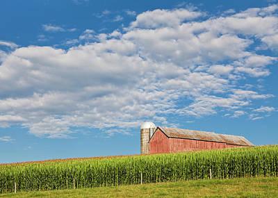Photograph - August Cornfield Landscape by Alan L Graham