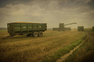 Photograph - August Harvest by Chris Lord