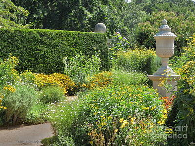 Photograph - August In The English Garden by Kathie Chicoine
