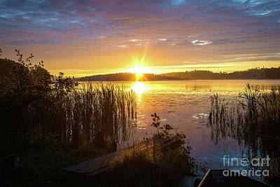 Photograph - August Morning At The Lake Enajarvi by Ismo Raisanen