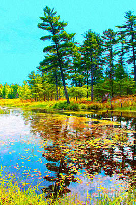 Photograph - August Pond Water Painting by Nina Silver