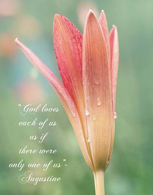 Photograph - Augustine Quote God Loves Each Of Us With Opening Lily by Denise Beverly