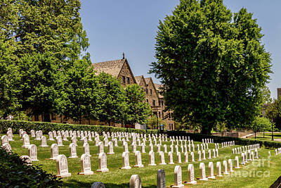 Photograph - Augustinian Cemetery by William Norton