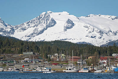 Photograph - Auke Bay Harbor Juneau Alaska by Loriannah Hespe