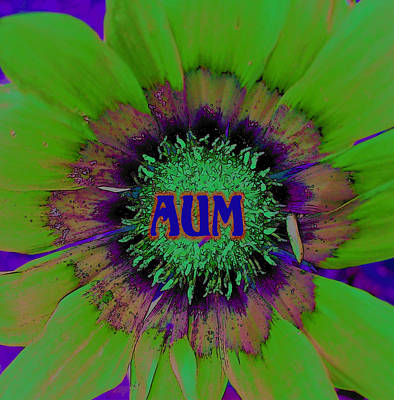 Heart Chakra Photograph - AUM by Vijay Sharon Govender