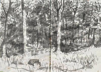 Painting - Summer In The Woods,ink Sketch by Martin Stankewitz
