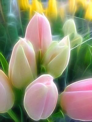 Aura Of Tulip Art Print