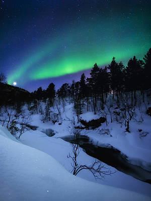 Polar Aurora Photograph - Aurora And A Full Moon Over Tennevik by Arild Heitmann