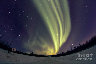 Photograph - Aurora Borealis Alaska March 21 2014 by John Chumack