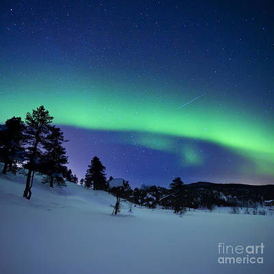 Photograph - Aurora Borealis And A Shooting Star by Arild Heitmann