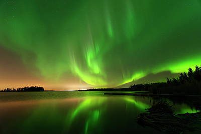 Photograph - Aurora Borealis At Elk Island National Park by Dan Jurak
