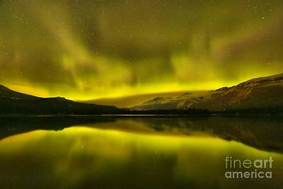 Photograph - Aurora Borealis At Jasper National Park by Adam Jewell