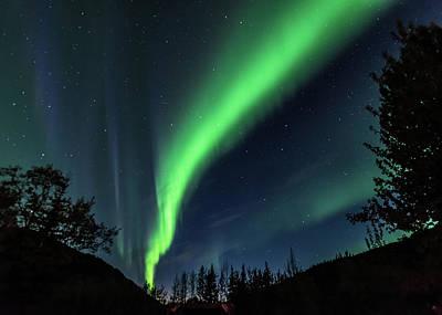 Photograph - Aurora Borealis Northern Lights At Kantishna In Denali National Park by Brenda Jacobs