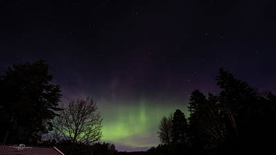 Photograph - Aurora Borealis Northern Lights by Torbjorn Swenelius