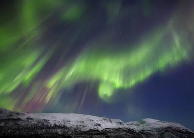 Polar Aurora Photograph - Aurora Borealis Over Blafjellet by Arild Heitmann