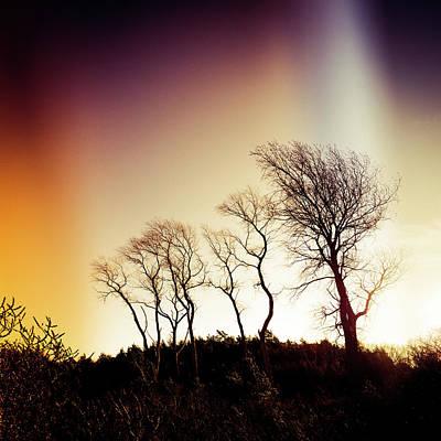 Photograph - Aurora Borealis by Radek Spanninger