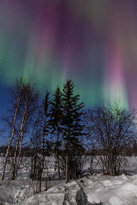 Photograph - Aurora Curtains by Valerie Pond