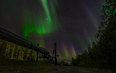 Robin Williams Photograph - Aurora Over  Trans-alaska Pipeline by Robin Williams