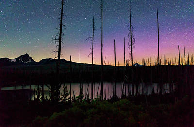 Photograph - Aurora Reflections by Cat Connor
