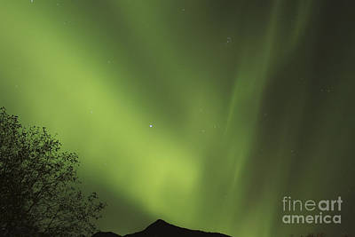 Target Threshold Nature - Aurora Sky by Carolyn Brown