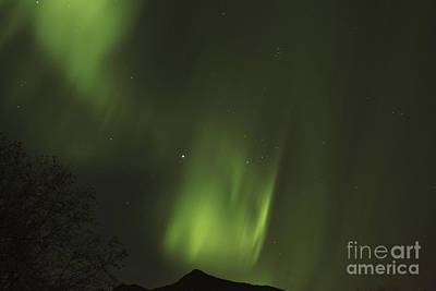Alaska Photograph - Aurora Spirals by Carolyn Brown