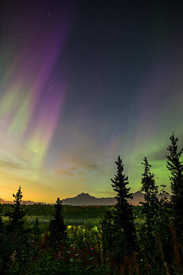 Astro Photograph - Auroral Blessings by Ron Day