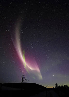 Photograph - auroral Phenomonen known as Steve, 5 by Jean Clark