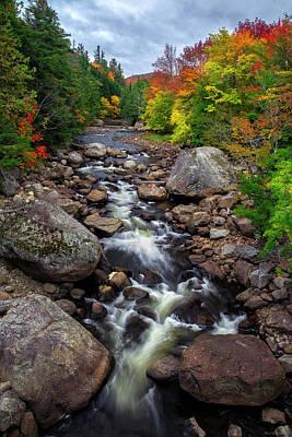 Photograph - Ausable Autumn 2 by Mark Papke
