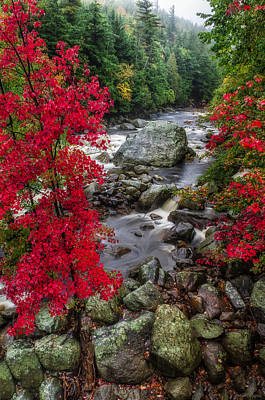 Beauty Mark Photograph - Ausable River by Mark Papke