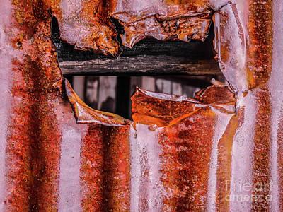 Photograph - Aussie Galvanised Iron #15 by Lexa Harpell