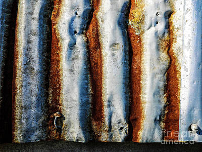 Photograph - Aussie Galvanised Iron #24 by Lexa Harpell