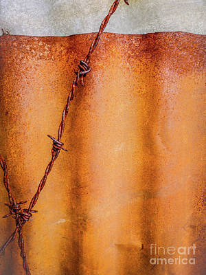 Photograph - Aussie Galvanised Iron #34 by Lexa Harpell